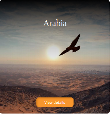 arabiatile-aboutus.png